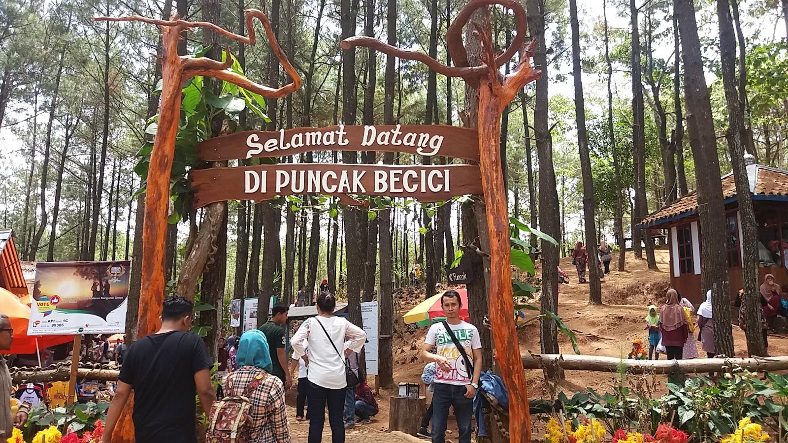 Travelling Is The Way To See A Life Hutan Pinus Becici Atau Puncak Becici Dlingo