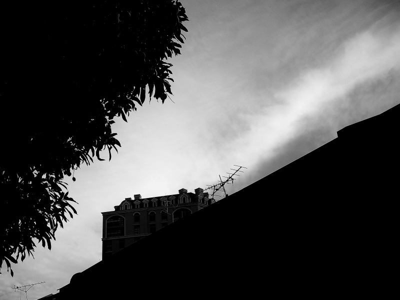 A Morning in Monotone 04
