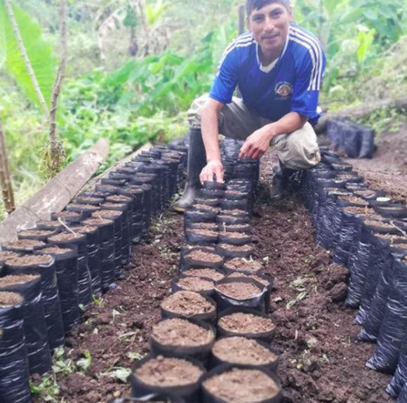 David Flores - Coffee Of Peru, San Ignacio