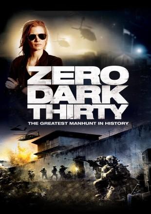 Zero Dark Thirty 2012 BRRip 480p 300Mb Hindi-English