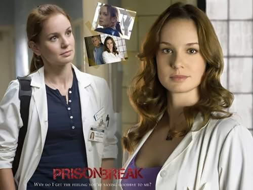 prison break sarah wayne callies