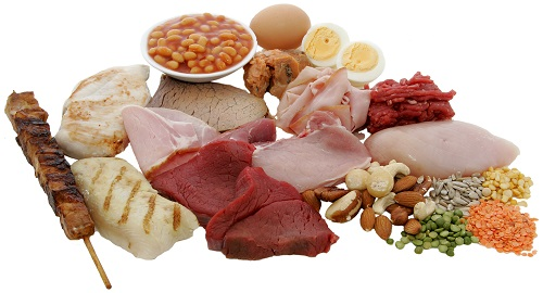 Protein benefits for the body, muscles and hair