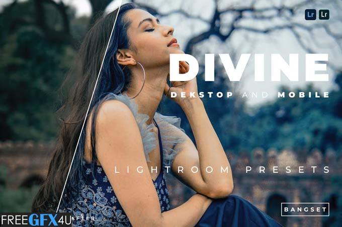 Divine Desktop and Mobile Lightroom Preset