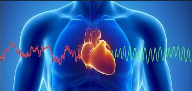 معلومات طبية عن القلب