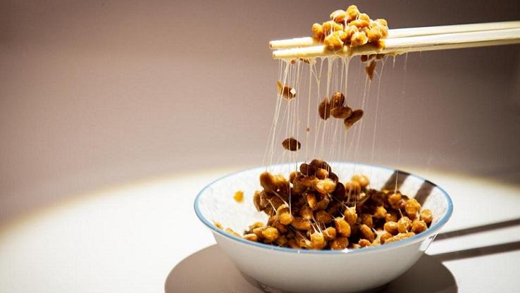 Museum Ini Berisi Jenis Makanan Paling Menjijikkan di Dunia