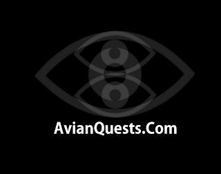 AvianQuests.Com Logo