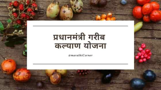 Pradhan Mantri Garib Kalyan Yojana Maharashtra