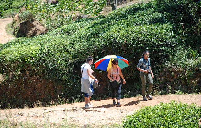 Adam's Peak Hike Full guide