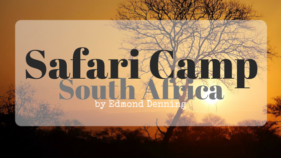 guest post, safari camp, south africa, travel