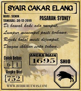 SYAIR SYDNEY 30-12-2019