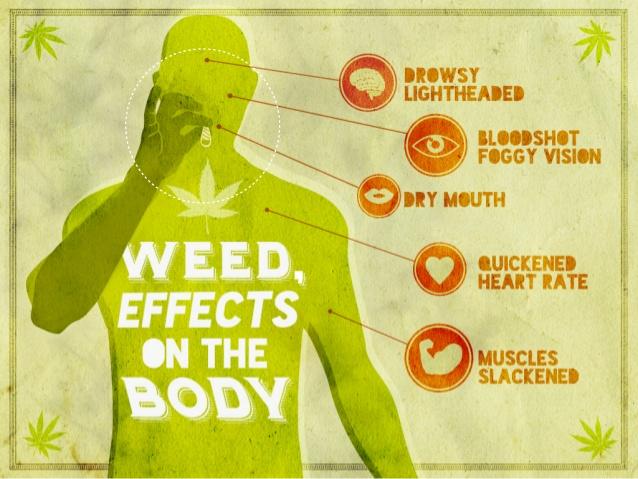 Marijuana:What is Effects of Weed on Brain and Body ~ Marijuana News