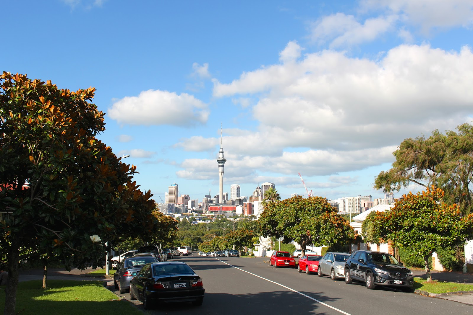 Auckland Hotspot guide - Ponsonby Road