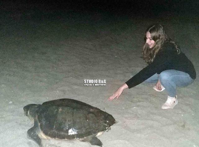 Εκπληκτικό: Η στιγμή που η θαλάσσια χελώνα Careta careta γεννάει στην παραλία Καραθώνας στο Ναύπλιο