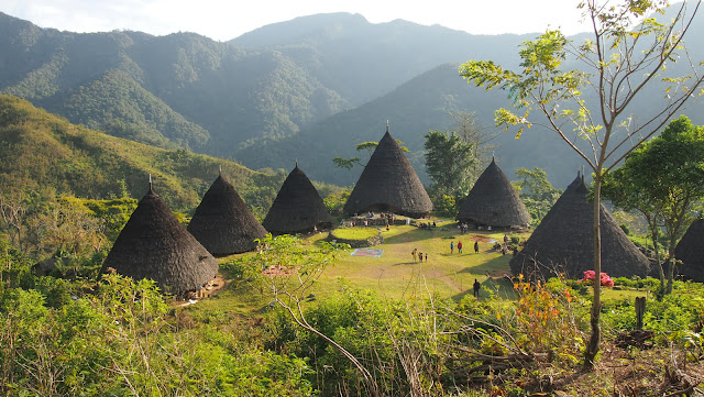 Menariknya-Wisata-Wae-Rebo-Florest-untuk-Liburan