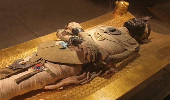 The Curse Of King Tuts Tomb Torrent: Tutankhamun Mummy
