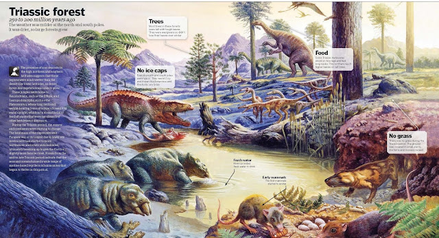 Triassic Forest