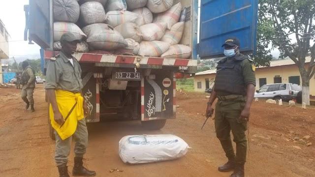 Tubah: Gendarmes impound 45 bags of Marijuana