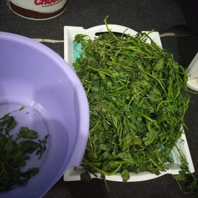 njama njama, vegetable, huckleberry, fixing