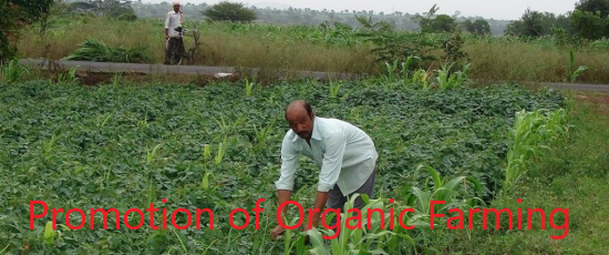 Promotion+of+Organic+Farming