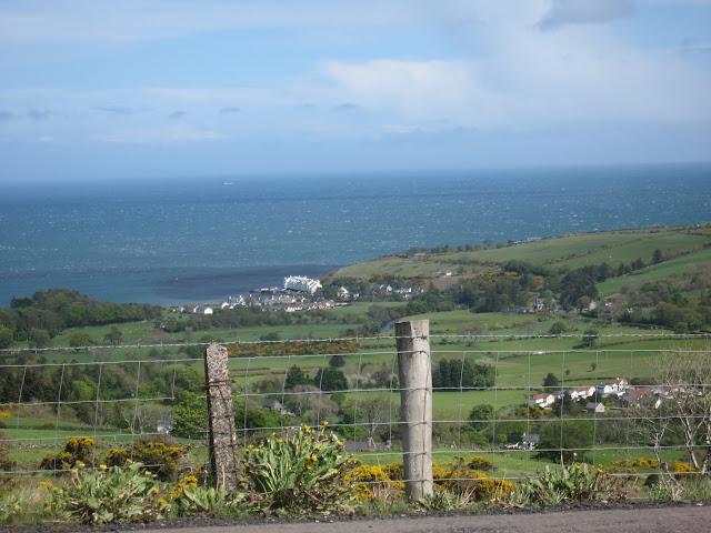 Antrim Coast Norther Ireland farmland and sheep