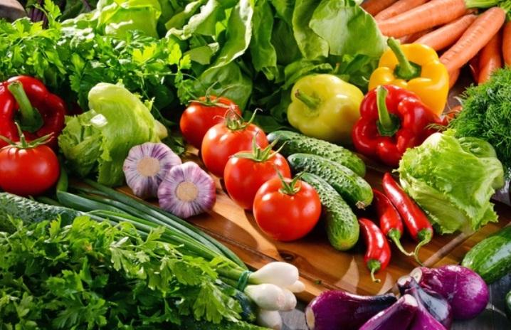 10 Ide Bisnis Pertanian Modal Kecil yang Menggiurkan di ...