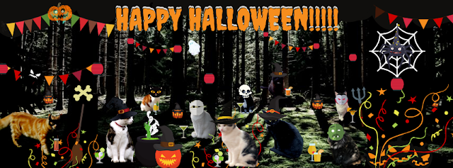 Happy Halloween from The Mewton-Clawson Cats - Basil &  The B Team @BionicBasil® 2019