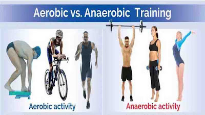 Aerobic and Anaerobic Respiration