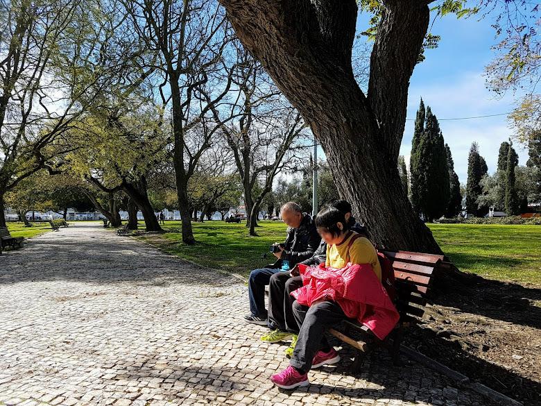 公園休息,曬太陽挺舒服的