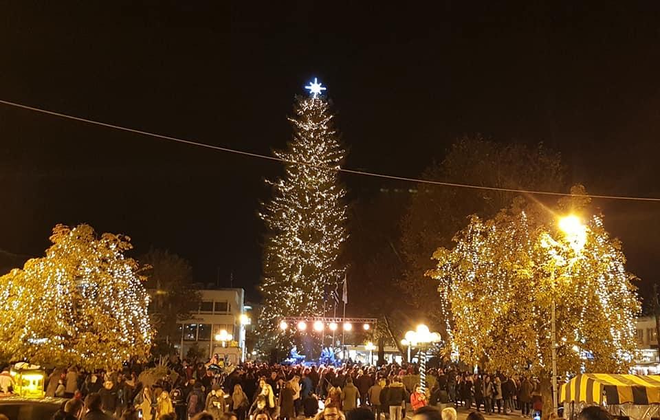 Φωταγωγείται το υψηλότερο φυσικό χριστουγεννιάτικο δέντρο της Ελλάδας στα Τρίκαλα