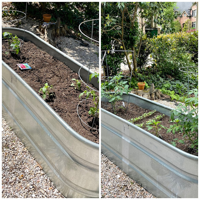side by side shot of a raised garden bed