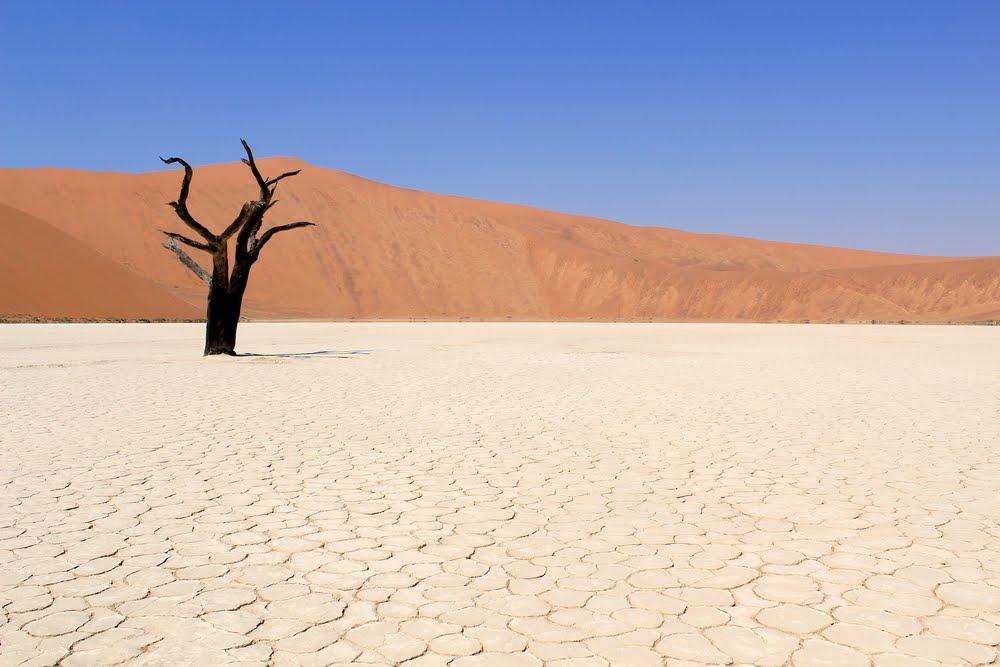 Sossusvlei Salt Flats of Namibian Desert