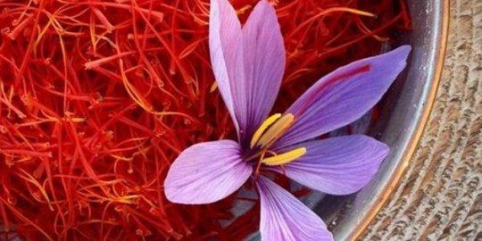 Manfaat Bunga Saffron Bagi Kecantikan