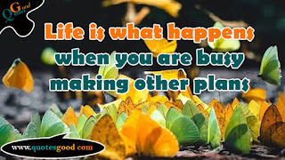 Life quote - Life is what happens when you are busy