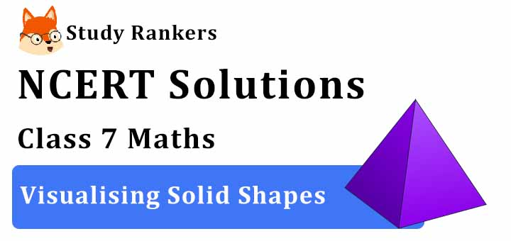 NCERT Solutions for Class 7 Maths Ch 15 Visualising Solid Shapes