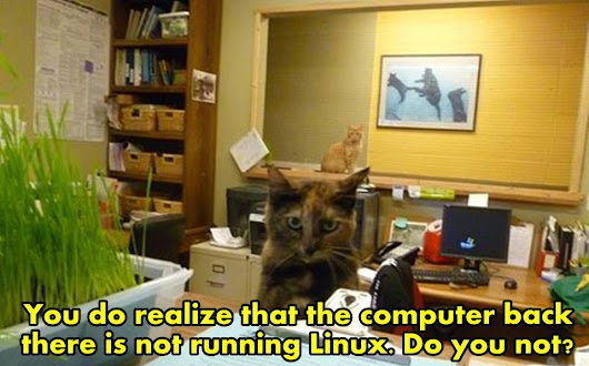 Linux Cats