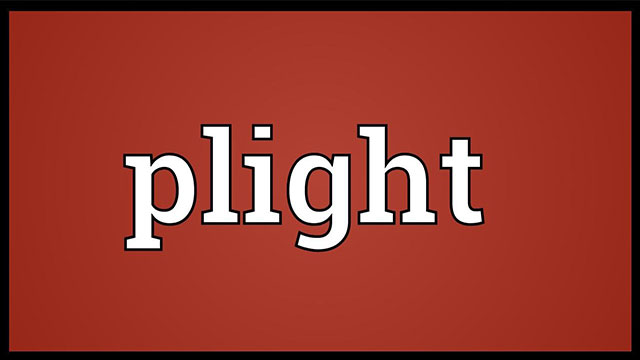 plight meaning