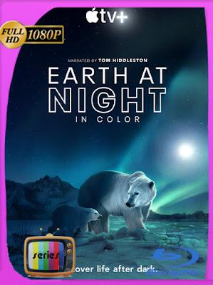 Planeta Nocturno A Todo Color Temporada 1-2 HD [1080p] [Latino] [GoogleDrive] [MasterAnime]