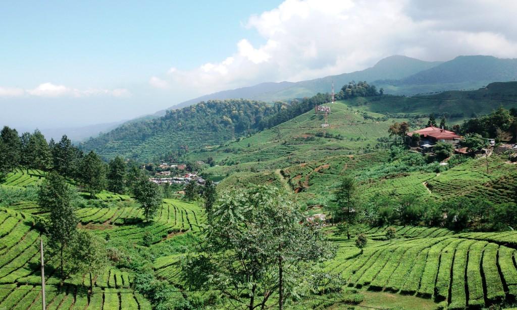 Wisata Pegunungan Terbaik Di Bogor