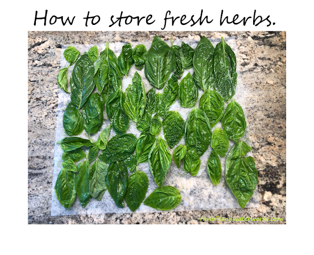 how to preserve fresh basil; freezing basil; garden basil; sweet basil; how to save basil for the winter; how to store fresh herbs