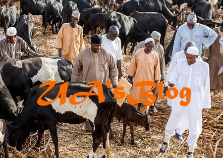 FULANI HERDSMEN: FG To Establish Bureau For Animal Identification And Management