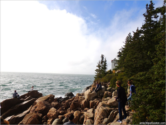 Rocas frente al Bass Harbor Head Lighthouse en el Parque Nacional Acadia, Maine