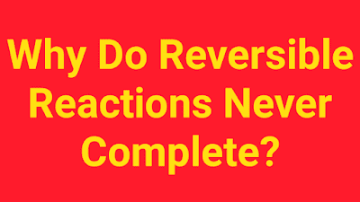 Why Do Reversible Reactions Never Complete?