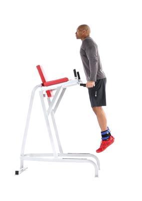 Tips Menggunakan Stall Bars untuk Latihan Kekuatan