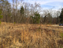 10  ACRES OF LAND FOR SALE