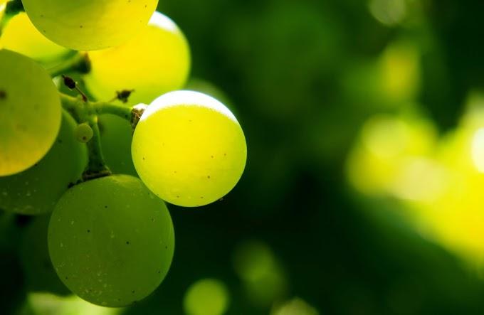 Fruta, Uva, Verde, Vitamina, Saúde