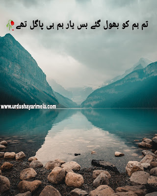 best urdu poetry