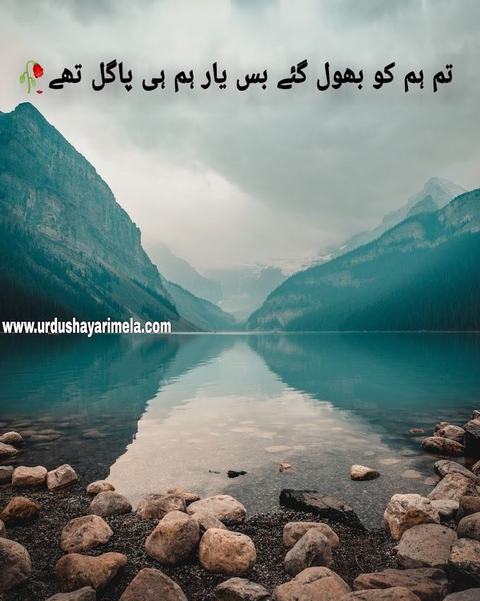 Tum Hum Ko Bhool Gaye/Best Urdu Poetry