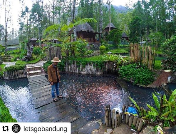 Kolam Pemancingan di Cimanggu Ciwidey Bandung