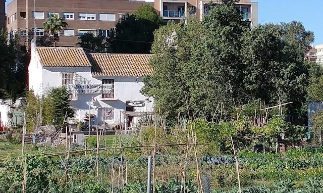 imagen 2: En Benimaclet sigue las mismas pautas que en otras ciudades y pueblos de la Comunidad Valenciana: Masías, casas y tierras ocupadas, chabolas construidas en solares.