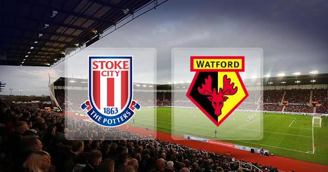 Stoke City vs Watford Full Match & Highlights 31 January 2018